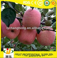frutta contenenti potassio per le mele