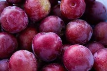 FRESH PLUMS FROM SOUTH AFRICA