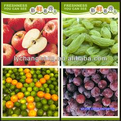 Fresh fruit exporters/Fresh apple fruit importer and exporter