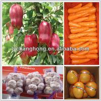 Dubai import, apple, ginger, garlic for dubai market