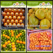 Fresh fruit company/importers of fresh fruits