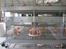 Automatic chicken breeding cage
