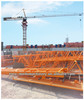 China Brand New Tower Crane QTZ50-5010 for Sale