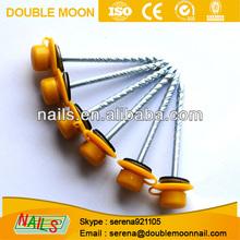 galvanized ring shank aluminium nails factory