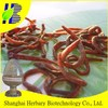 2015 low activity earthworm powder Lumbrukinase 20000IU/mg