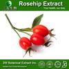 Phamaceutical Grade Food Supplement Pure Vitamin C Rosehip Extract