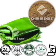 High Quality Seaweed Extract/Fucoidan 15%