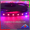 Flexible LED Grow Strip/plant grow strip for Plants