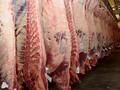Congelados cow_beef carcasses_boneless beef_ halal