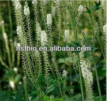 2.5% 5% Triterpen saponine Black cohosh extract
