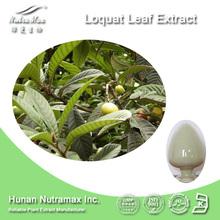 100% Pure 25%~98% Ursolic Acid Loquat Leaf Extract--NutraMax Supplier