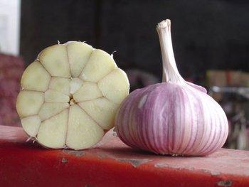 wholesale fresh natural natural garlic for dubai