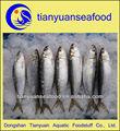 الجملة المأكولات البحرية أسماك السردين المجمدة