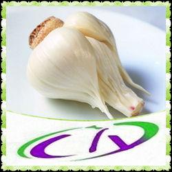 Top Quality Natural Allicin/Alliin/ pure Garlic Oil