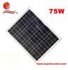 pv solar panel 75W poly