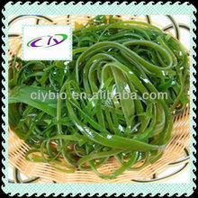 Food or feed grade dried kelp powder