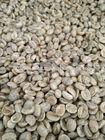 Premium Arabica Coffee Beans