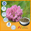 GMP&ISO 8-60%Isoflavones Red Clover Seed Sale