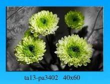 Photo natural flower design landscape wall picture