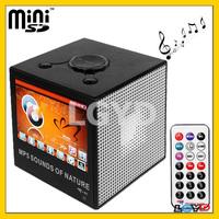 2GB 3.5 inch TFT LCD Mini Digital MP5 Sound Box Player with Remote Control