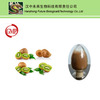 Hot Sale Fructus Actinidiae Chinensis extract/Kiwi fruit extract