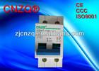 100A 2p Main switch isolator