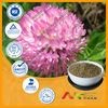 GMP&ISO Red Clover Extract Zonghoo