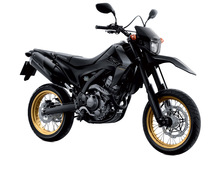 CBR 250 M dirt bike off road
