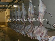 AL-Sabaqa Halal Chilled Beef