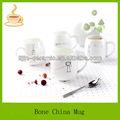 10oz yalıtımlı bone china çay set/kemik porselen kahve kupa bardak/kahve bardak toptan