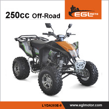 egl 250cc EEC street quad