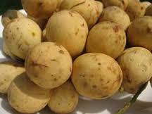 fresh Langsat Fruit