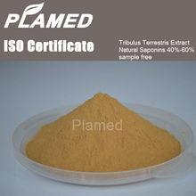 free sample tribulus terrestris extract powder 60 saponins in bulk,Wholesale tribulus terrestris extract powder 60 saponins