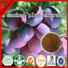 Smoked Plum Extract/ Dark Plum Fruit Extract /Black Plum Extarct