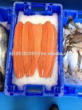Fresh Salmon sushi Grade