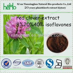 Chinese manufacturer pure red clover extract