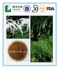 Free sample Factory price 2.5-8% Triterpene Saponins Black Cohosh Extract