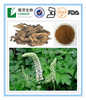 Factory price 2.5-8% Triterpene Saponins Black Cohosh Extract