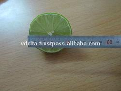 Fresh Citrus Fruit (Green Lemon)