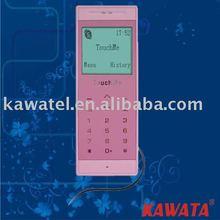 wireless phone(skype)