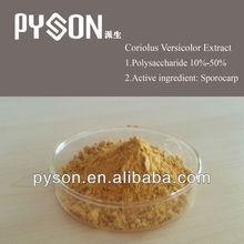 Coriolus Versicolor Extract / Yunzhi Mushroom Extract polysaccharides