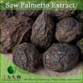 100% puro saw palmetto extracto de fruta de ácidos grasos hecho en china