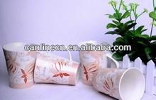 300cc Promotion New Born China Mug with assorted fruit design