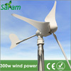 300 Watt 12/24V Small Wind Turbine Generator
