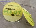 Chinese Paper Umbrella