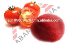 Spray Dried Tomato Powder (pure)