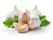 2014 Hot Sale Natural Fresh Garlic