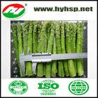 Frozen Food Green Asparagus