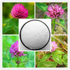 High qualiy red clover extract Biochanin A in bulk stock, worldwide fast delivery
