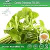 NutraMax - Centella asiatica /Gotu Kola Extract / Centella Triterpenes 70%-98%